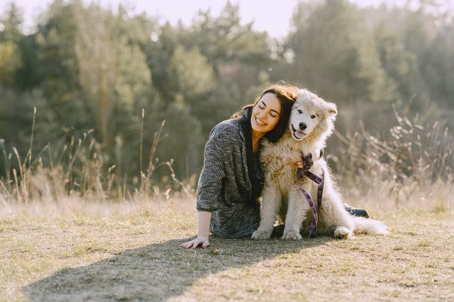 Woman embracing her dog with thick coat while sitting on grass